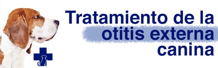 Tratamiento de la otitis externa canina